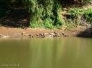 Windjana Gorge - Gibb River Road