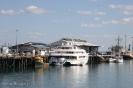 Hafen - Darwin