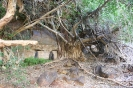 Dales Gorge - Karijini National Park