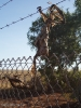 Camingplatz Port Hedland
