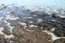 Hamelin Pool Telegraph House - Shark Bay