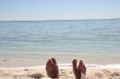 Shell Beach - Shark Bay