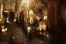 Tantanoola Cave Conservation Park