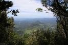 Lamington National Park - Auf dem Walk bei O'Reilly's