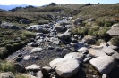 Auf dem Weg auf den Mount Kociuszko