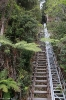 Katoomba - Scenic World
