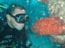 Three Finns, Ningaloo Reef