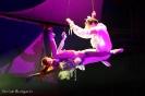 !HIGH VOLTAGE! (Duo Excellence) 12. und 13.06.2009 - Ulmer Zelt