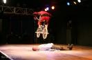 !HIGH VOLTAGE! (Frank Wolf) 12. und 13.06.2009 - Ulmer Zelt