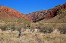 West MacDonnell Ranges - Ormiston George (Pound Walk)