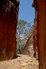 West MacDonnell Ranges - Standley Chasm